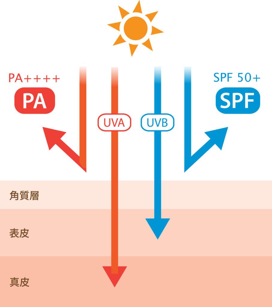SPFやPAについての図
